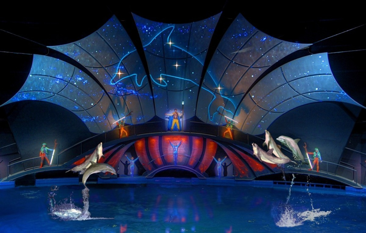 Dolphin Tales Show is one hour long with musical performances and acrobatics