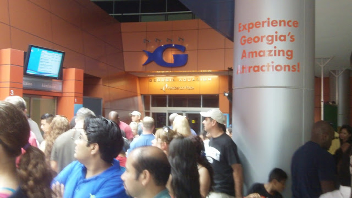 The entrance waiting line for the Aquarium can take as long as 1 hour and a half or more. Make a VIP line with the Atlanta City Pass