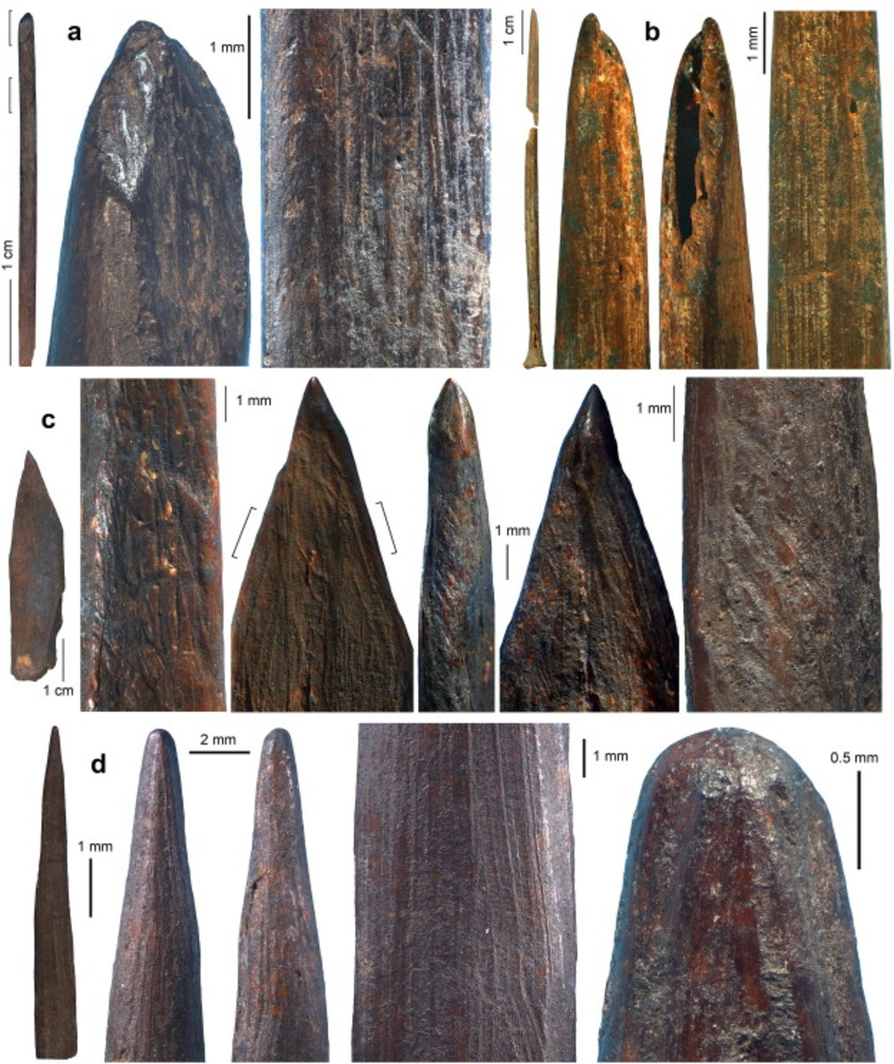 Manufacture and use-wear traces on pins and awls from Sibudu Cave.