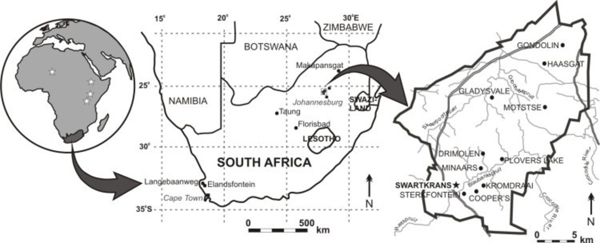 Swartkrans Cave (Gauteng, South Africa), located ~40 km northwest of Johannesburg, in Gauteng Province, South Africa, is one of the world's most important paleoanthropological sites.(1) the recognition that many of the hominids were collected in the