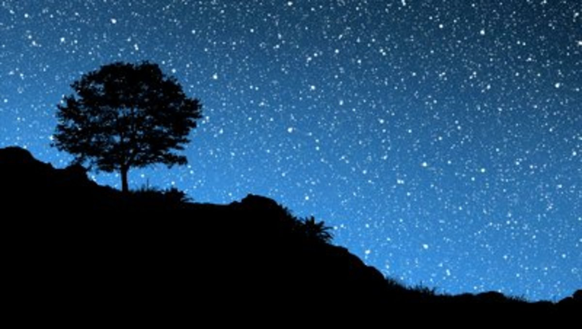 The Sky and the Stars of the Milky Way