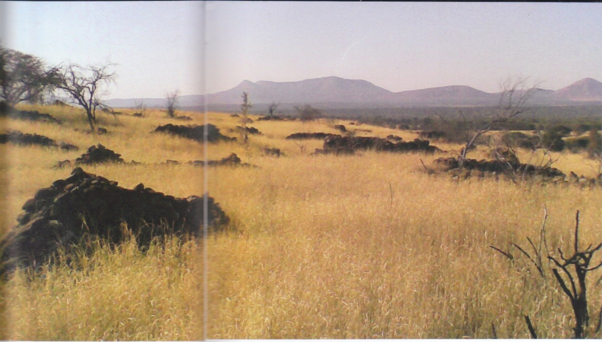 The Vast Expanse of ruined city near Rustenburg, South africa. this is one of the lost cities that were identified, covering about 10,000 km square - larger than modern Johannesburg or Los Angeles. All the stones were brought from elsewhere