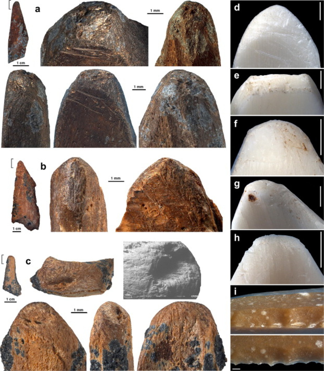 Traces of modification and use recorded on bone tools from post-Howiesons Poort (a), and Howiesons Poort (b–c) layers interpreted as pressure flakers, compared to those produced experimentally in this task (d–h) to retouch lithics (i).