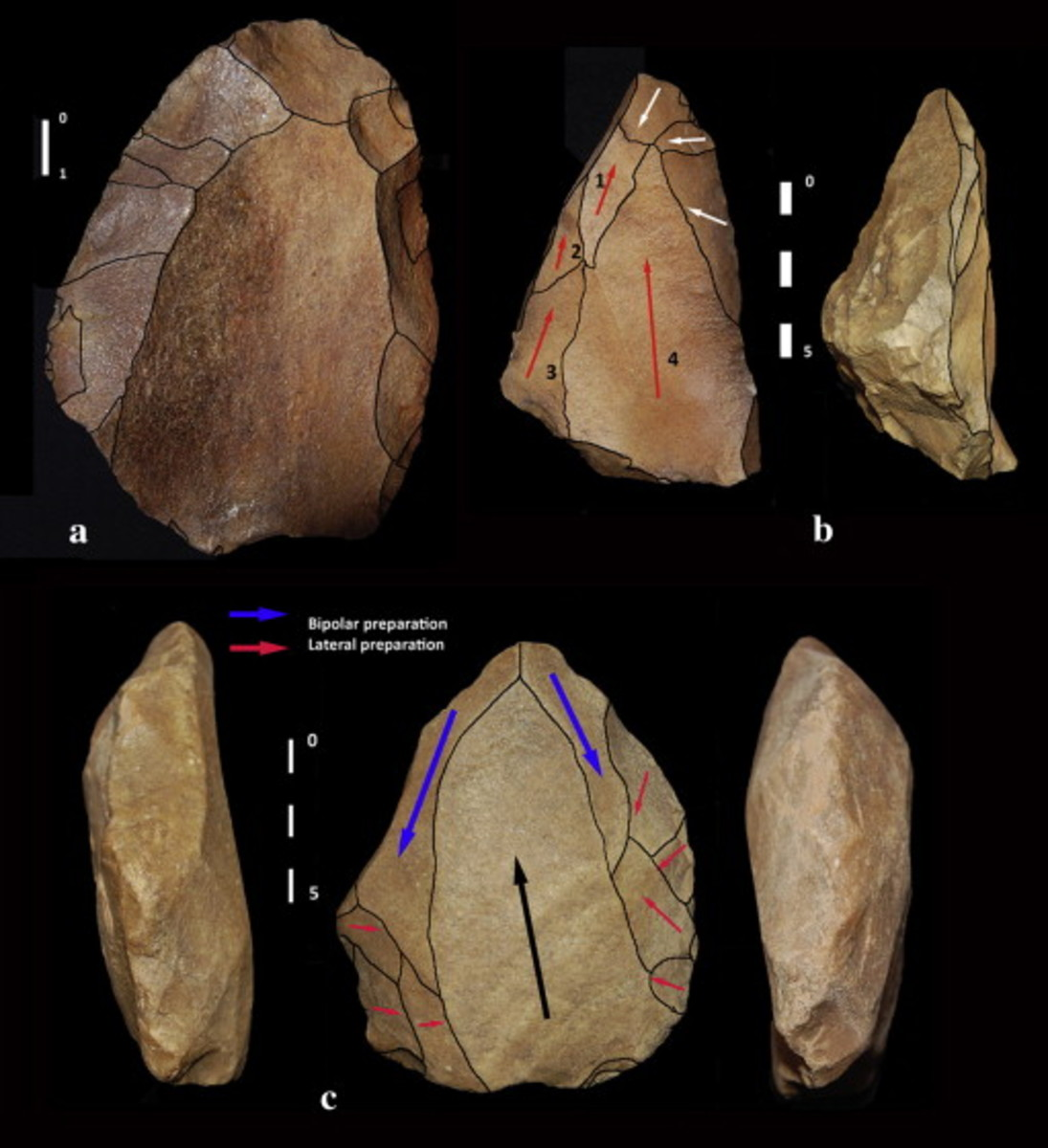 Cores from MES11 surface: a) preferential Levallois, b) convergent/point Levallois, c) Nubian Type 1.