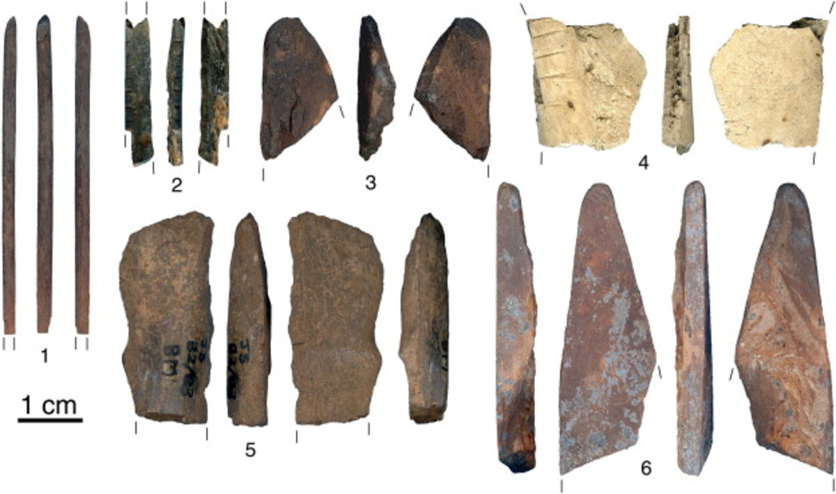 Fig. 2. Bone artefacts from final MSA (n. 1) and Post-Howiesons Poort layers (n. 2–6) at Sibudu Cave.