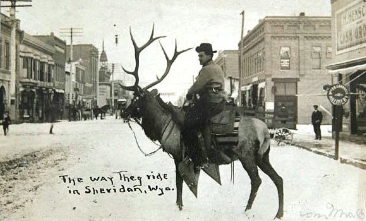 Riding Deer