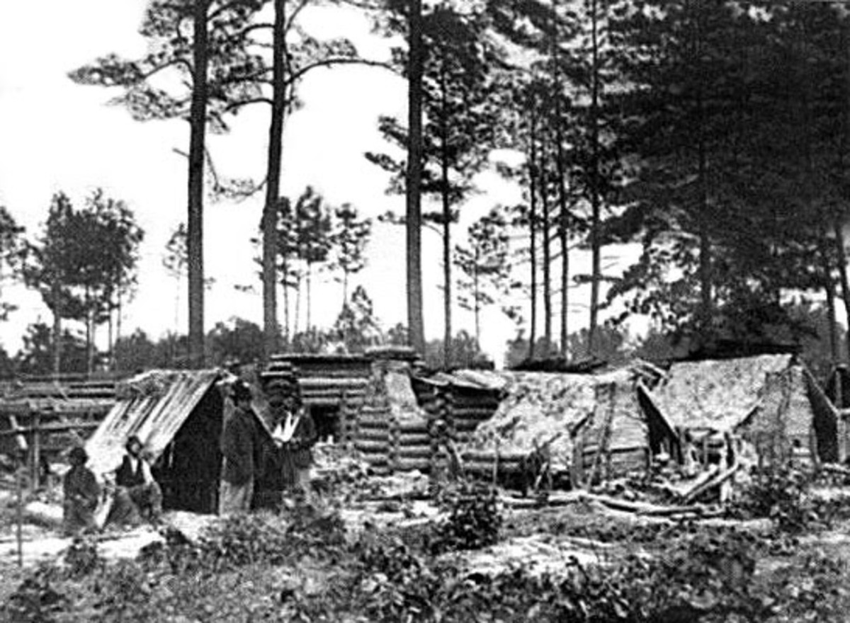Log Huts with tent and / or thatched roofs