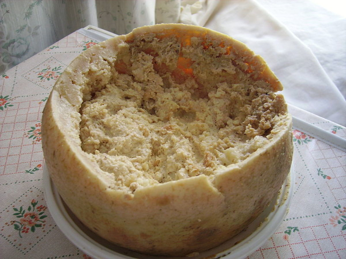 A platter of Casu Marzu, with its top cut off, exposing the maggot-infused cheese within.