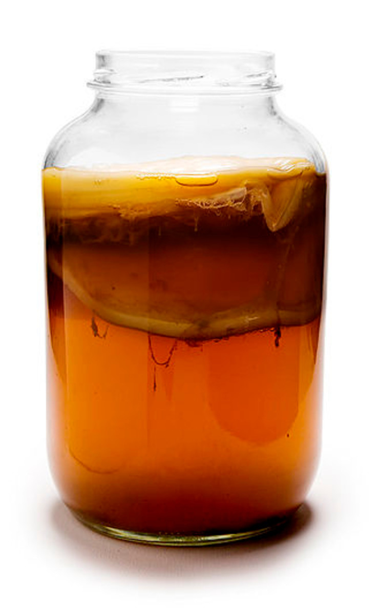 A jar of Kombucha, with a SCOBY floating around the middle and top.