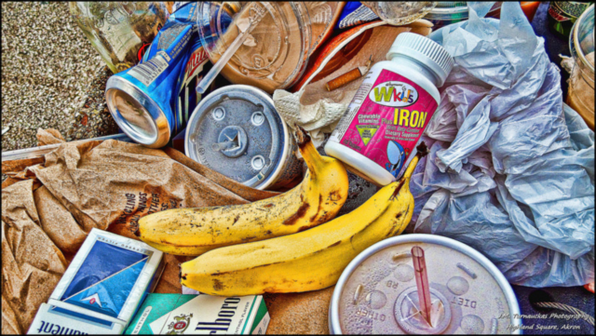 "Garbage for dinner, anyone? To be fair it's not as bad as it sounds and goes far beyond vegetable peels, off-cuts & decayed food. ""Freegans"" often find unopened packaged goods in the trash outside stores and shopping centers."