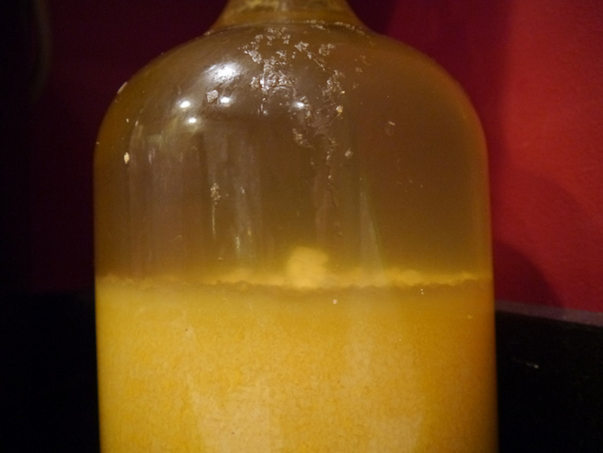 A jar of mashed up and rotting fruit cocktail, sugar, lemon juice and bread yeast.