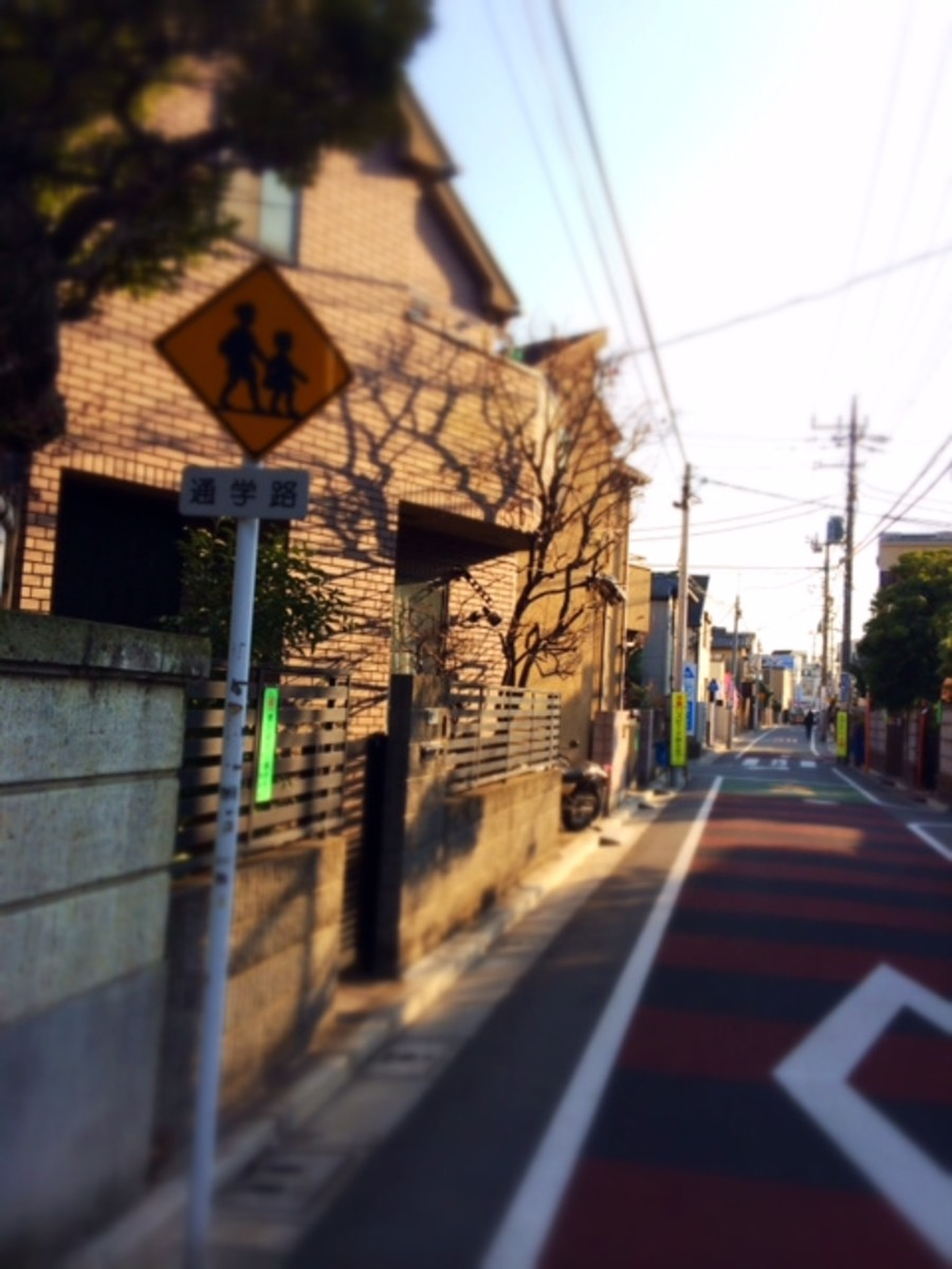 Streets are narrow so people, bicycles and cars must share the valuable space. Watch out for the occasional cat.
