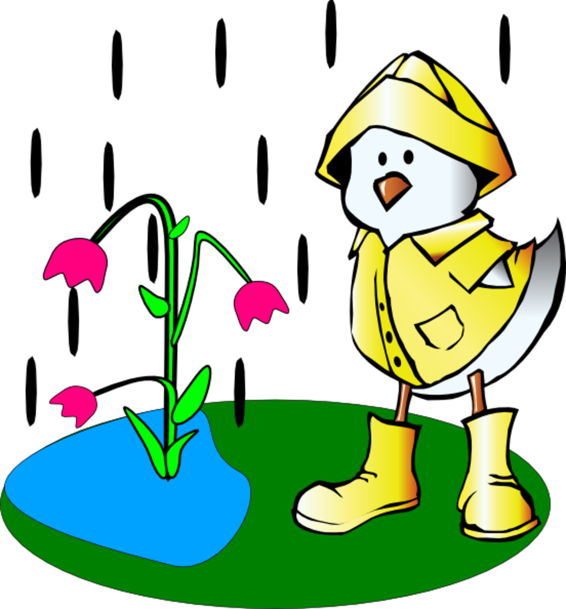 Raining on Cartoon Duck and Tulips