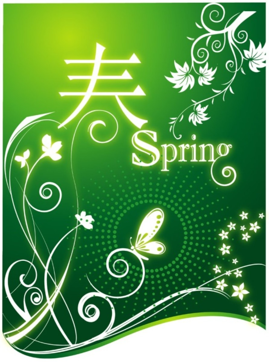 Chinese New Year Spring Graphic