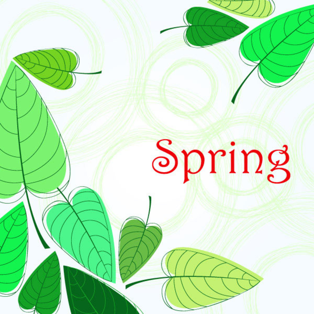 Spring with Green Leaves