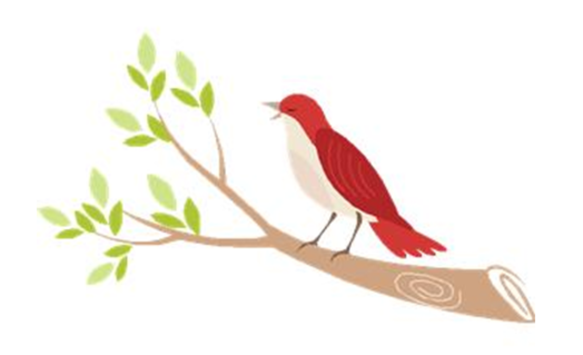 Bird Singing on Tree Branch