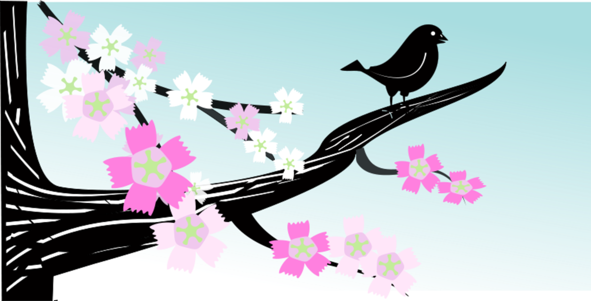Bird in Tree with Pink Blossoms