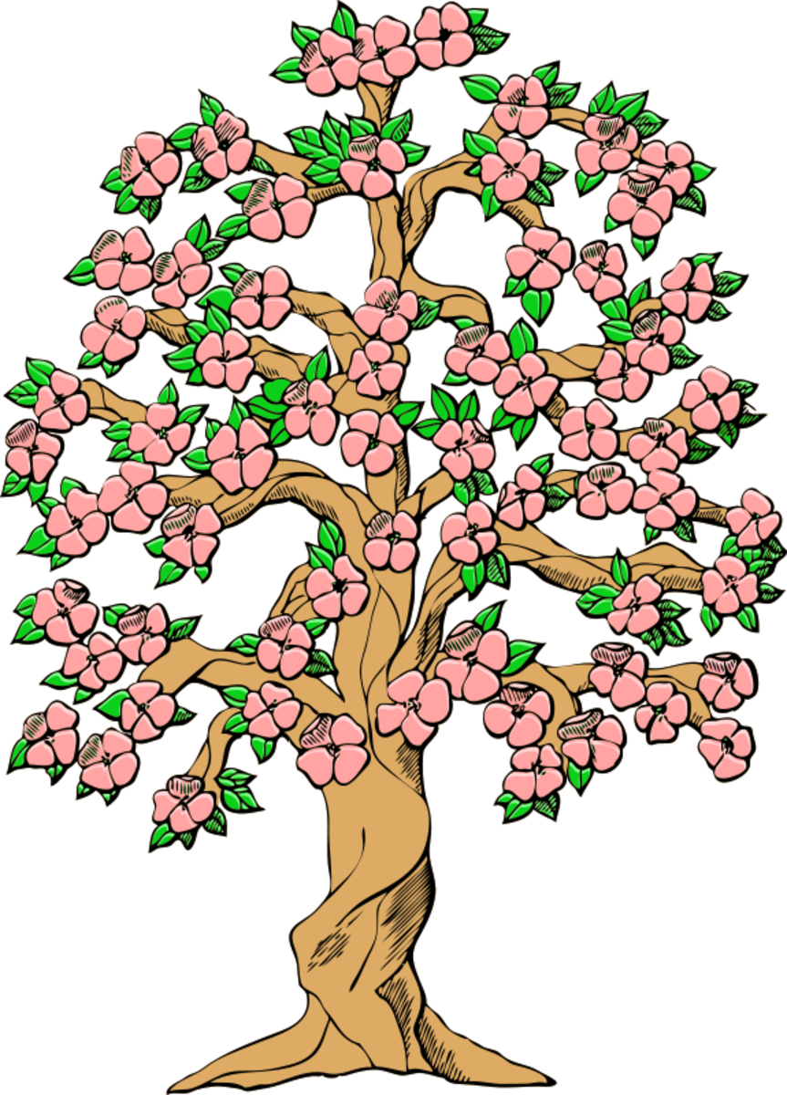 Spring Tree with Pink Blossoms