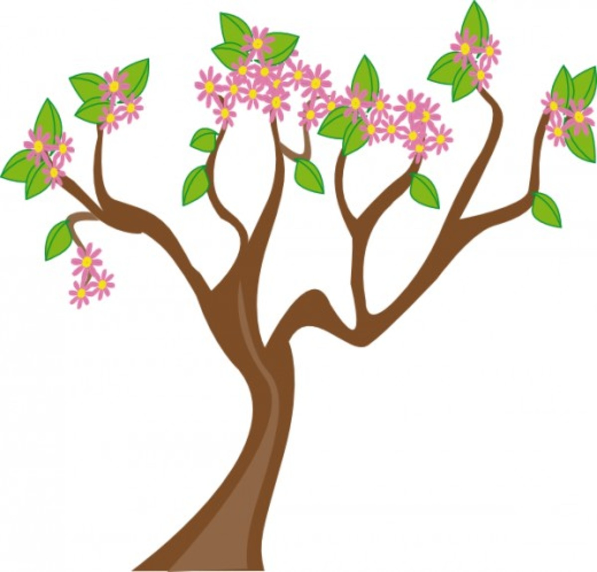 Tree with Pink Flower Blossoms
