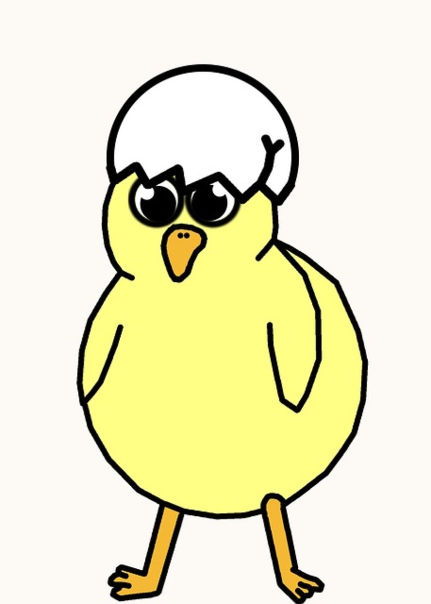 Cartoon Spring Chick with Eggshell on Head