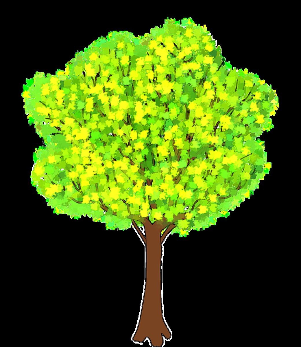 flowering tree clipart - photo #15