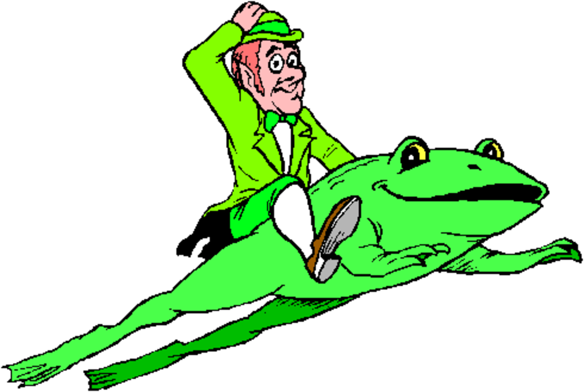 Leprechaun Riding on a Toad