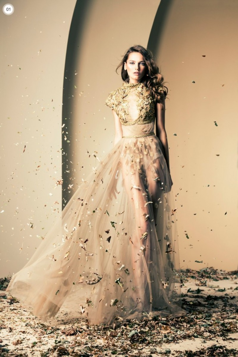 Ridiculously Gorgeous Gown by Ziad Nakad in taupe.