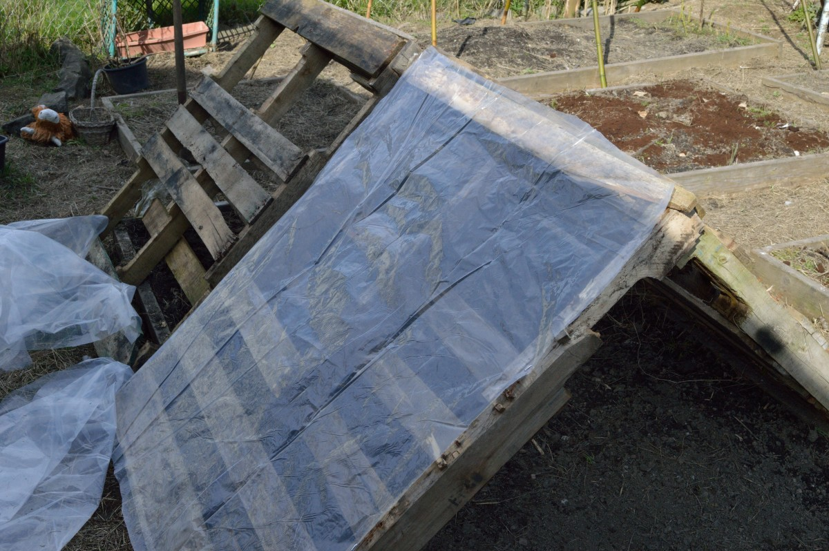 Tack the plastic on to the pallets