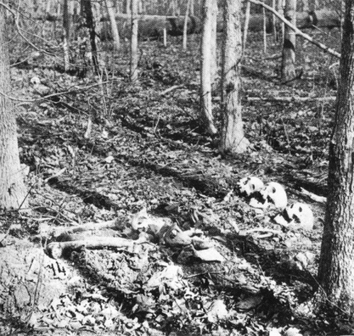 Erosion exposed the graves of these skeletons in the Wilderness, VA