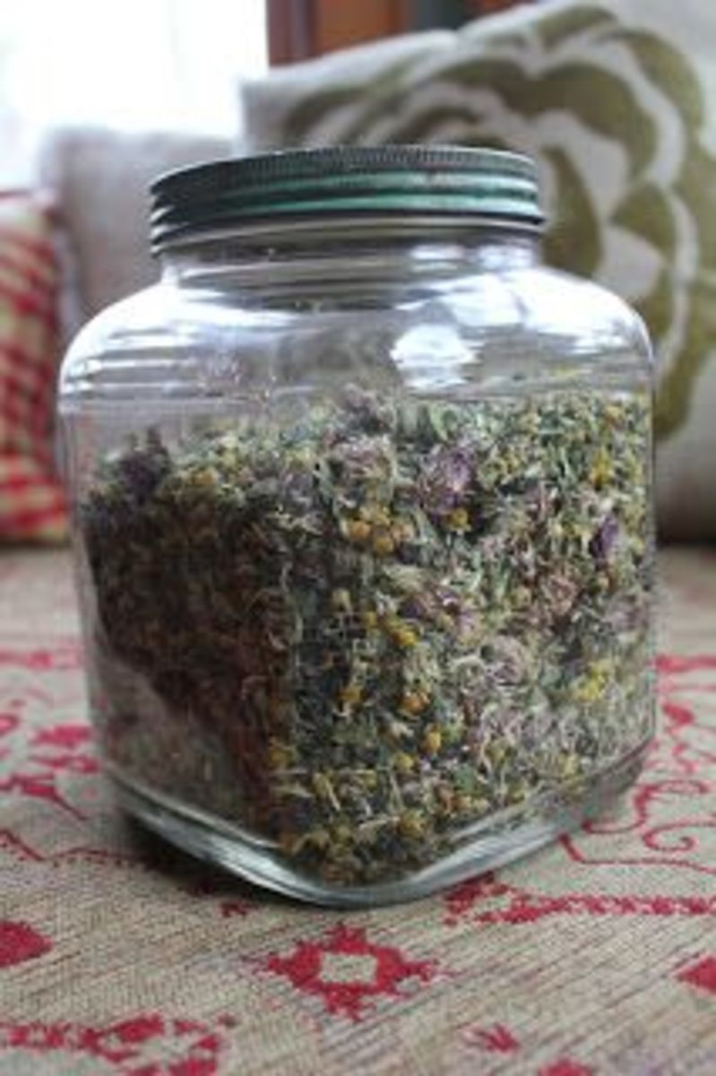 Medicinal Herbal Teas for Breast Cancer Recovery