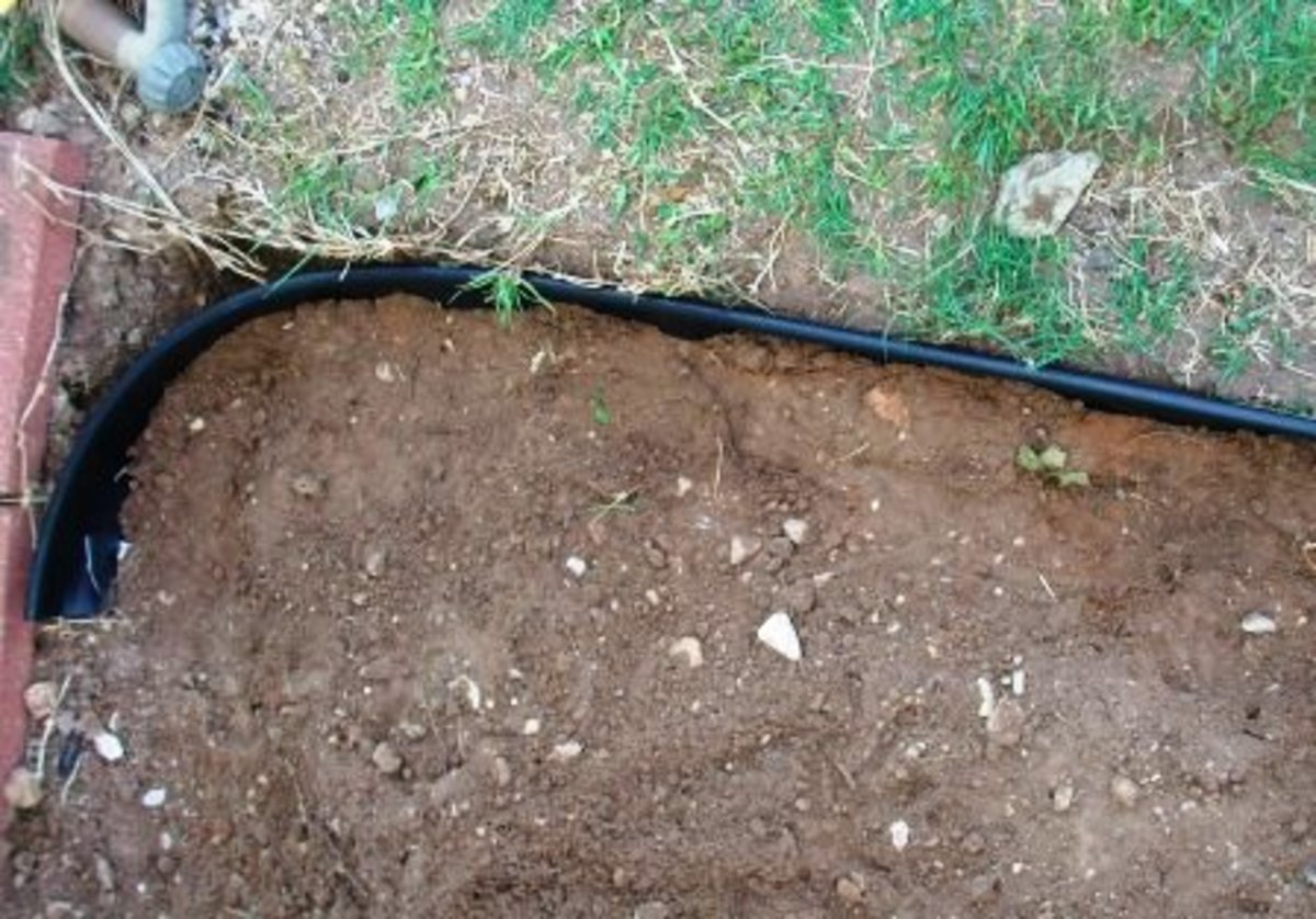 Fill trench with soil