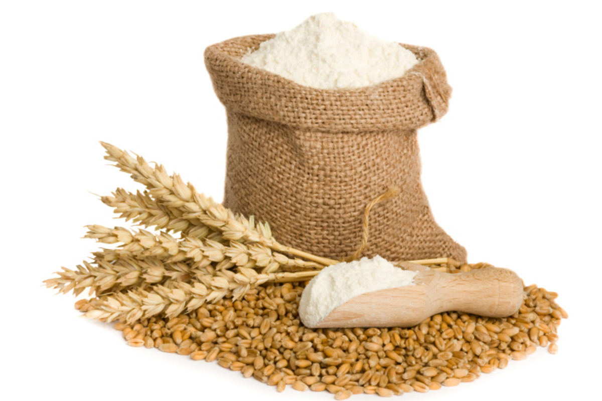 Wheat Grains & flour