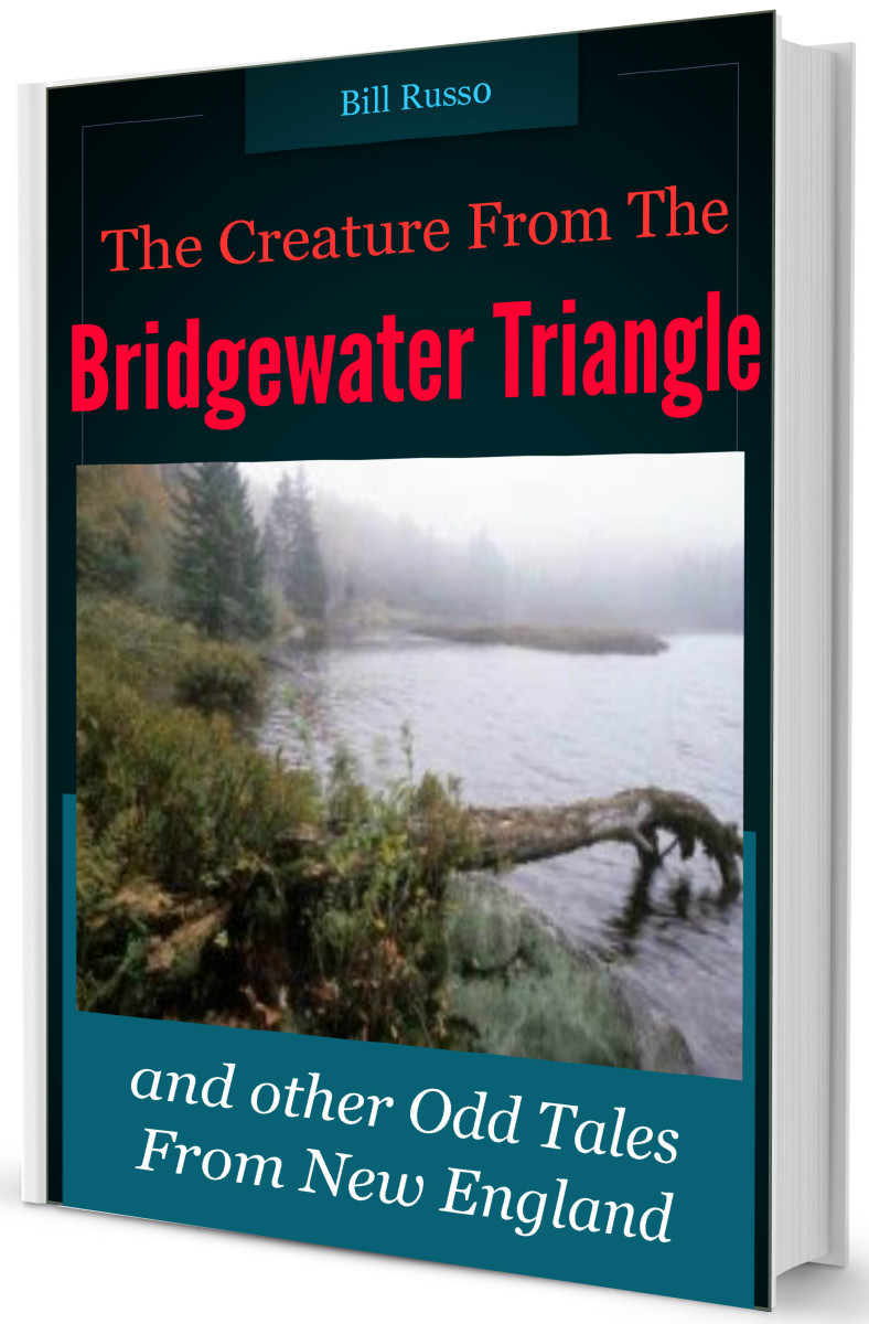 i-survived-the-bridgewater-triangle