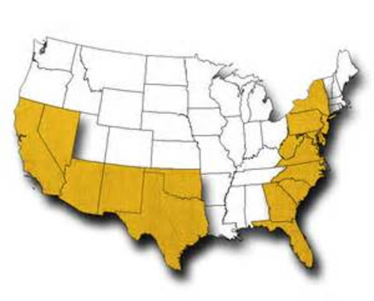 Yellow area represents where Black Widow Spiders can be found.