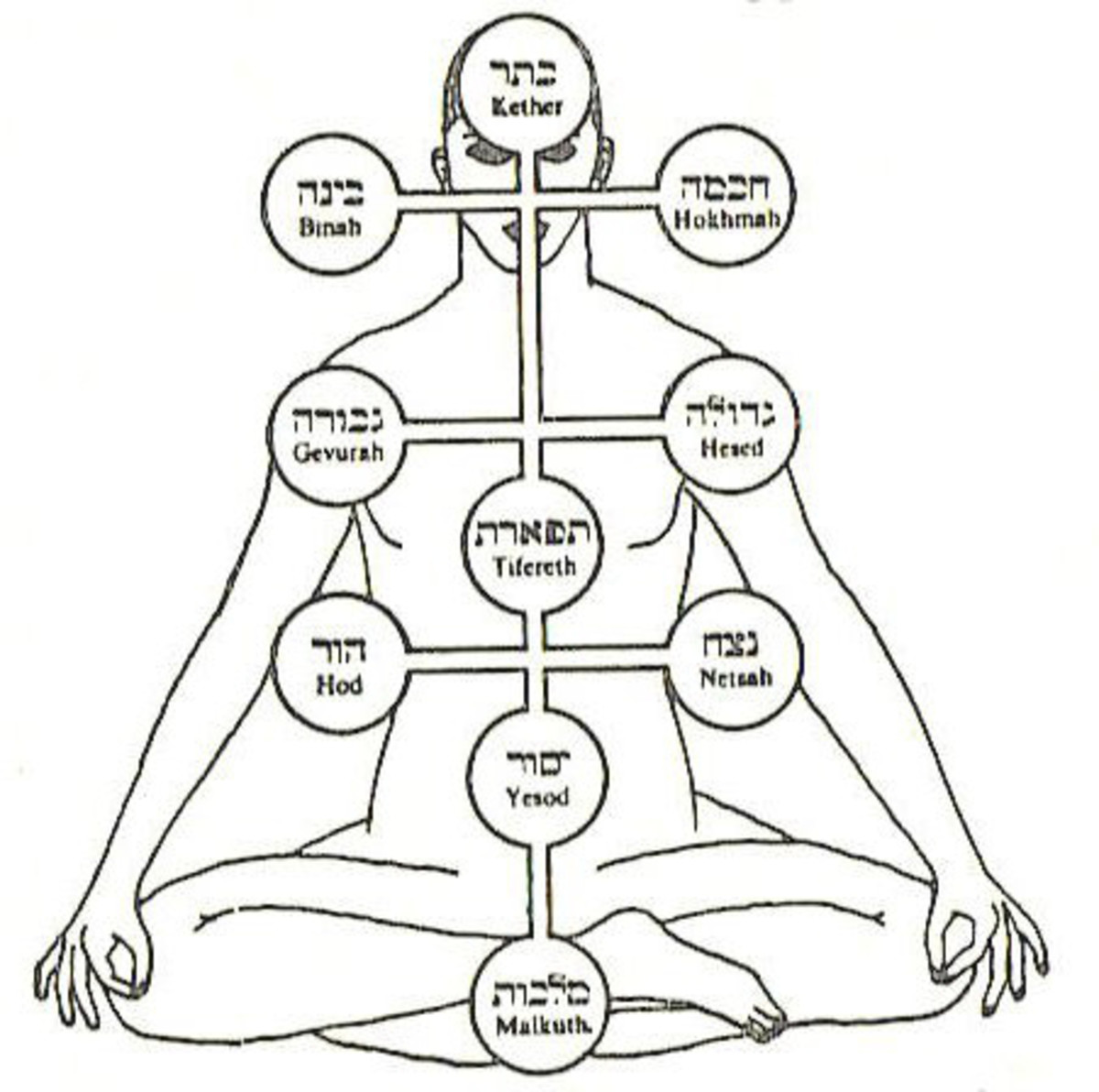 Using sacred geometry we see how it relates to our own human form, chakras and the Tree of Life.