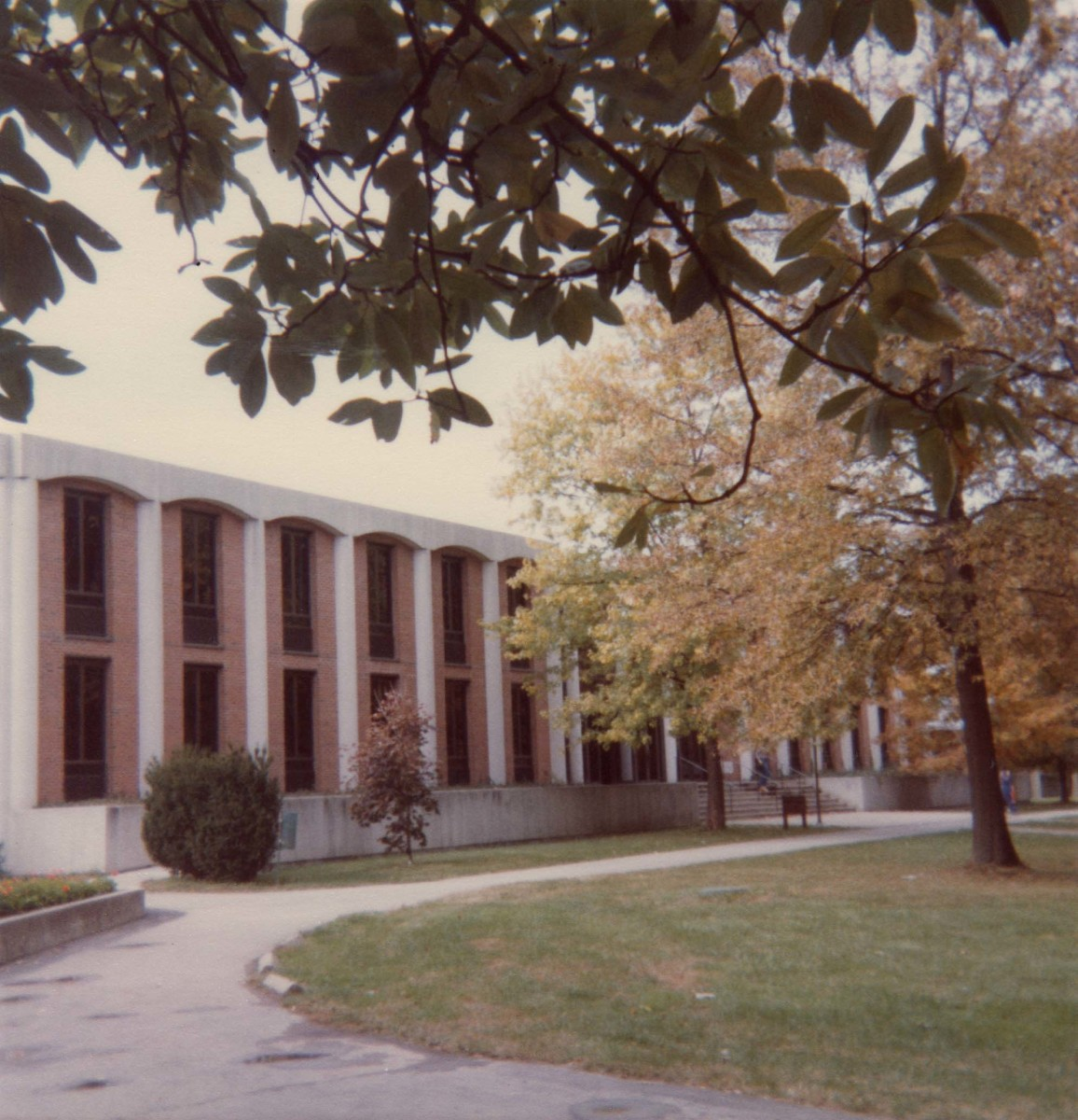 Hutchins Library, home of several special collections, is open to the public.