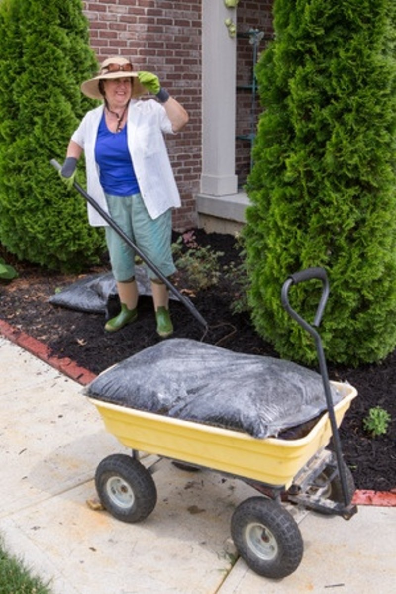 Gardening with the help of an older wagon.