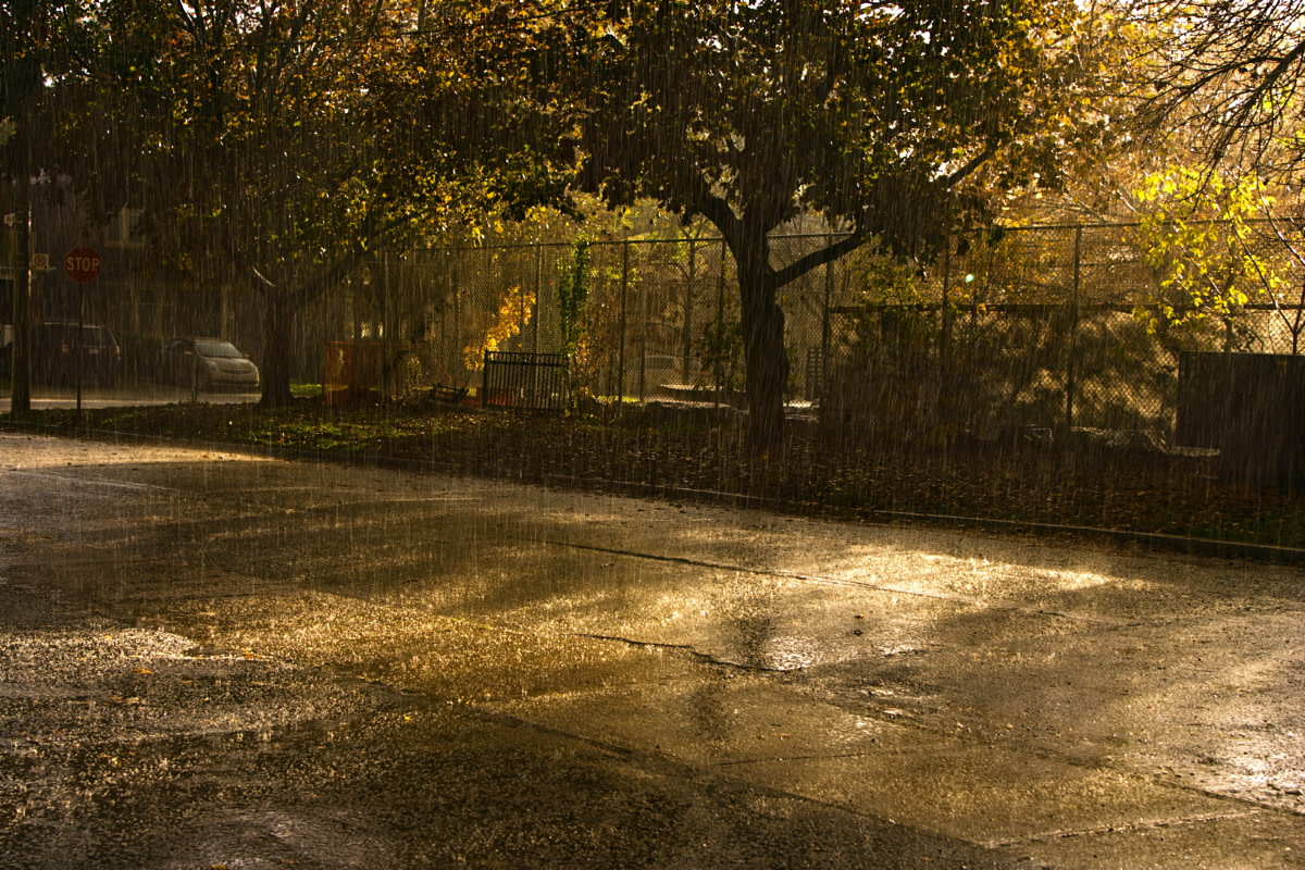 Rain removes pollution from the air.