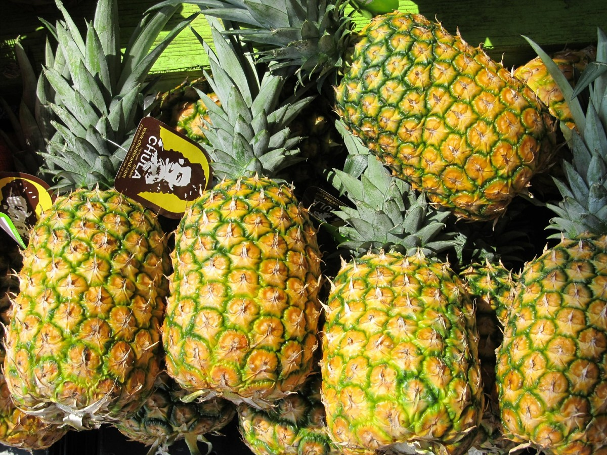 You get your pumpkins ready. Meanwhile, the Hawaiians will be carving their pineapples.