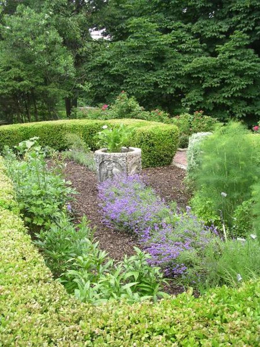 The Shakespeare garden in the Elizabethan herb garden at Mellon Park Pittsburgh.