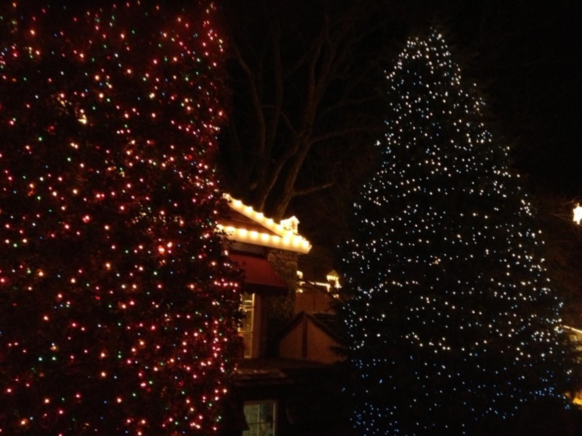 Peddler's Village Christmas Lights