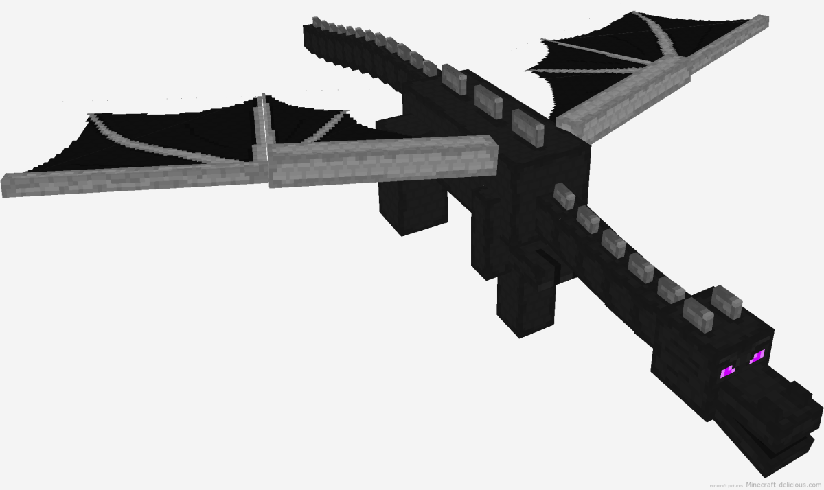 Finding the Minecraft Ender Dragon is a task not for the weary. Good planning, stock, and weapons as well as a good plan all help to defeat the Ender Dragon and get the Dragon egg rarest block currently available