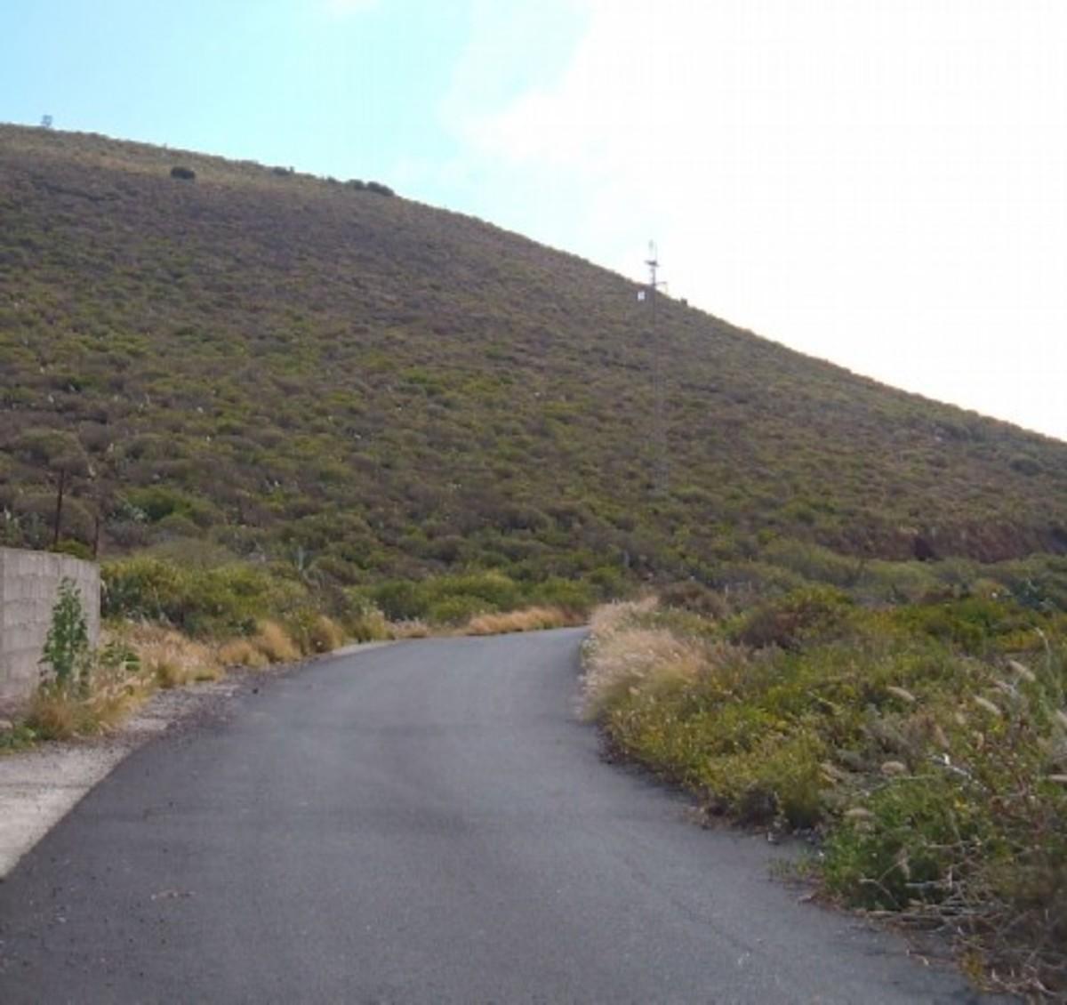 Road up Montana de Taco