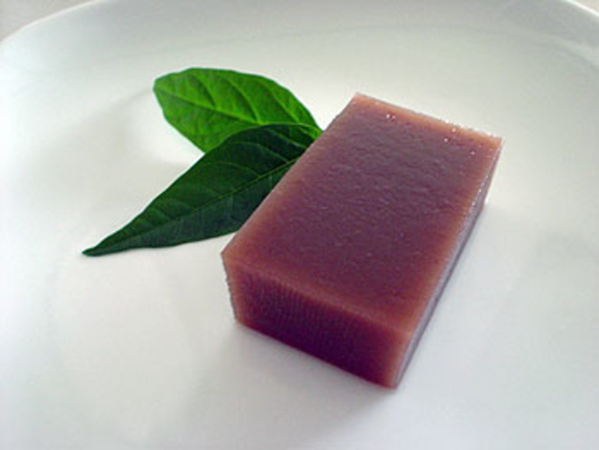 yokan (soft red bean jelly)    (courtesy of http://onokinegrindz.typepad.com)