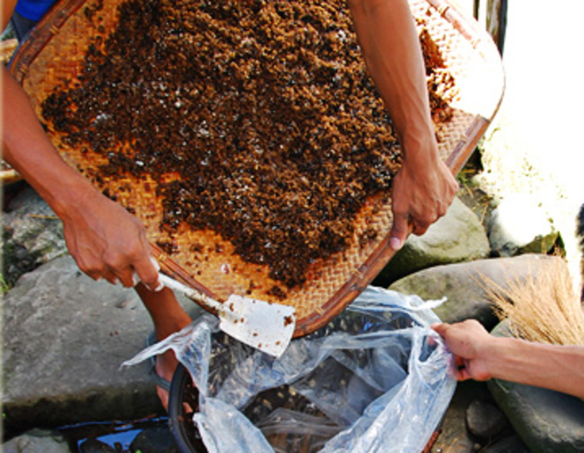 Transfer the rice and bubod mixture inside a plastic bag (Image Credit: AkosiSuperEdwinK from pinoyphotography.org)
