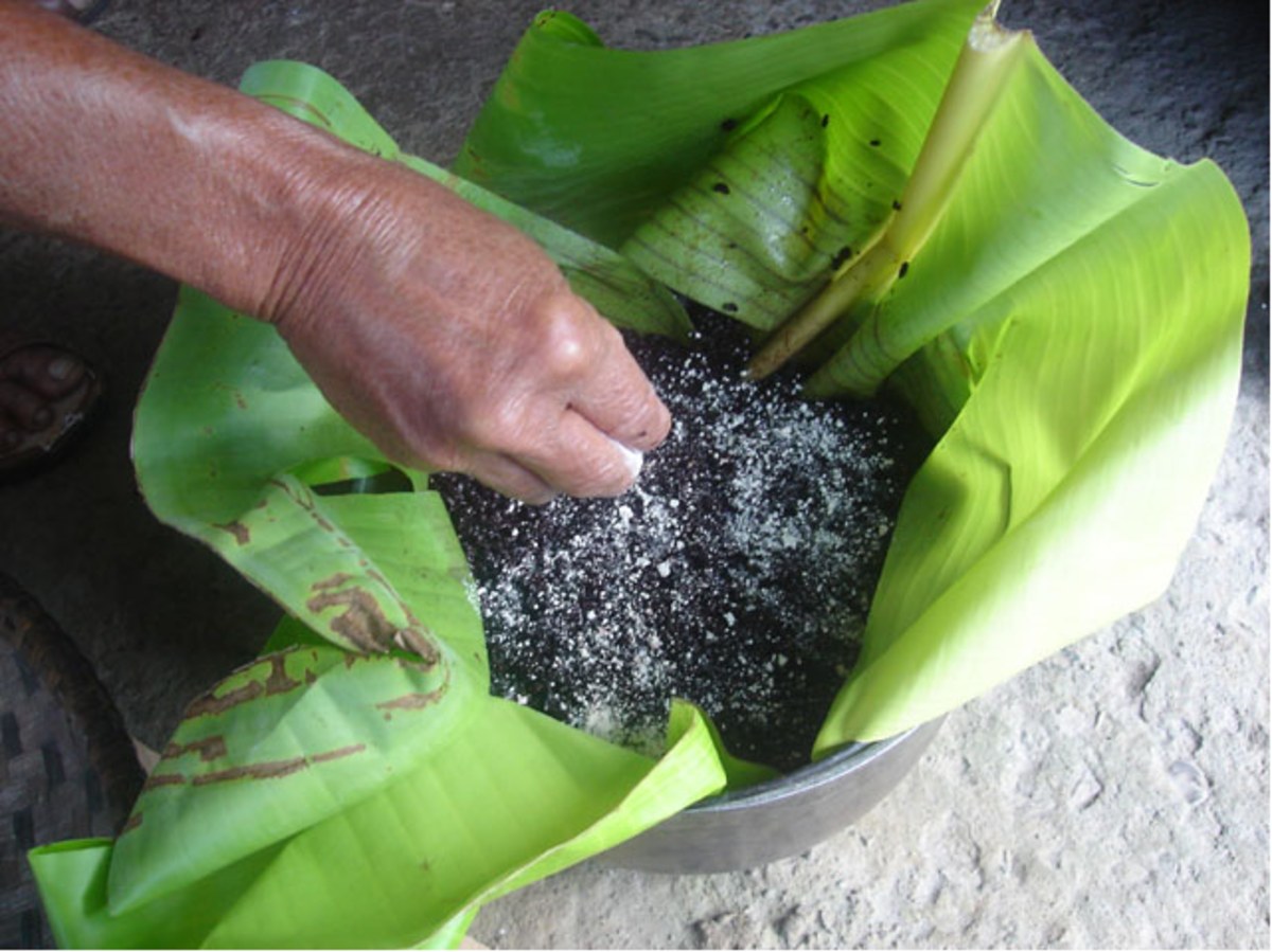 Sprinkle remaining bubod powder over mixture before sealing the banana leaf wrap (Image Credit: Photos by Jun Verzola and Brenda Dacpano/NORDIS from galleries.nordis.net)