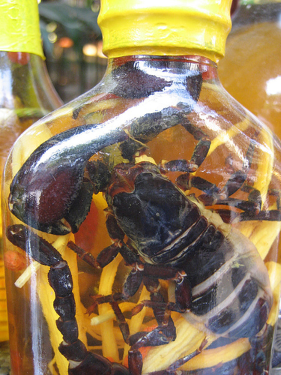 Rice Wine with Snakes and Scorpions in Vietnam (Photo courtesy by benklocek from Flickr.com)
