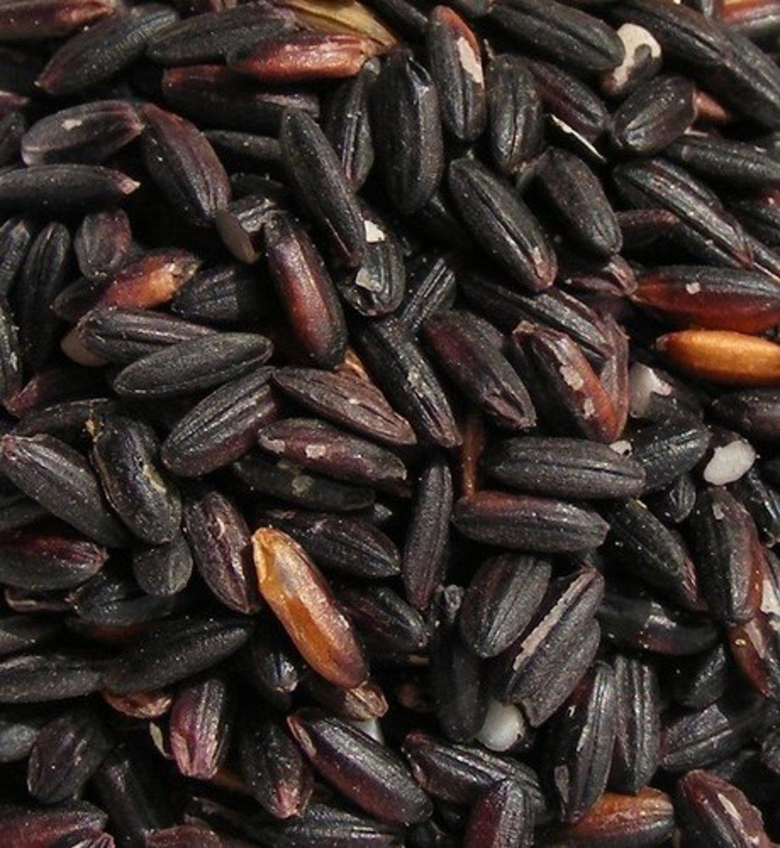 Black Glutinous Rice (Photo courtesy by FotoosVanRobin from Flickr.com)