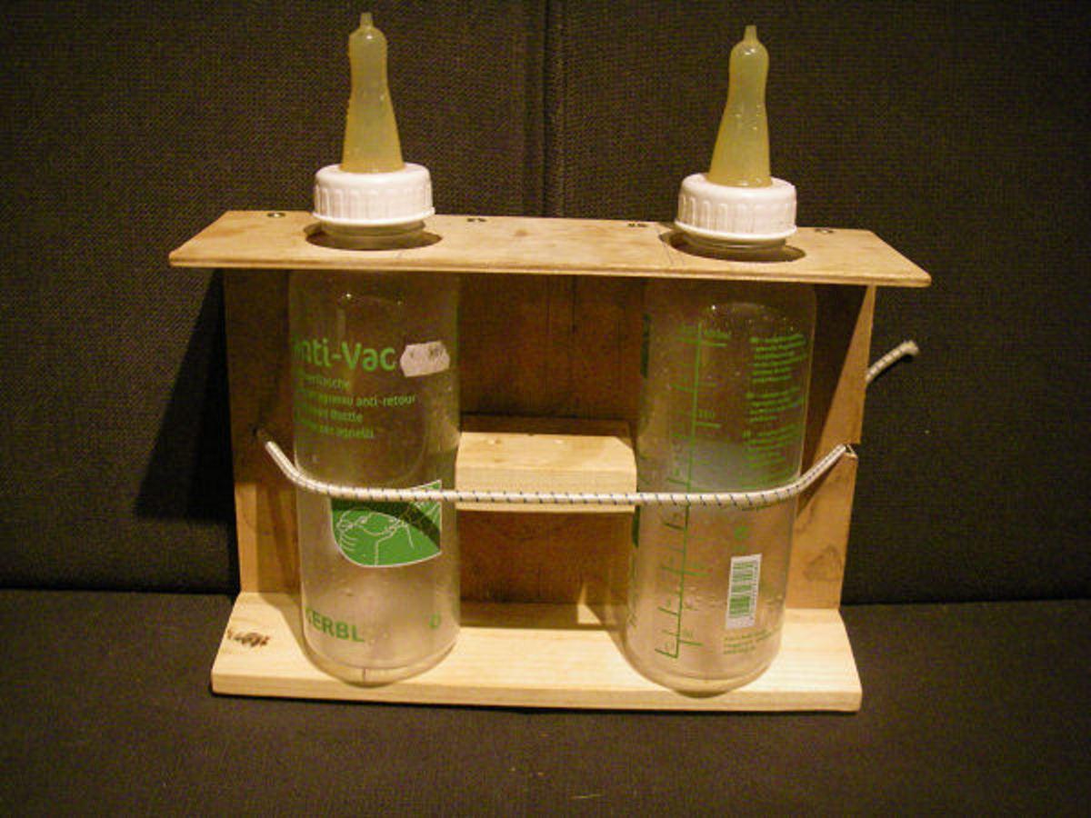 Homemade bottle feeder for lambs