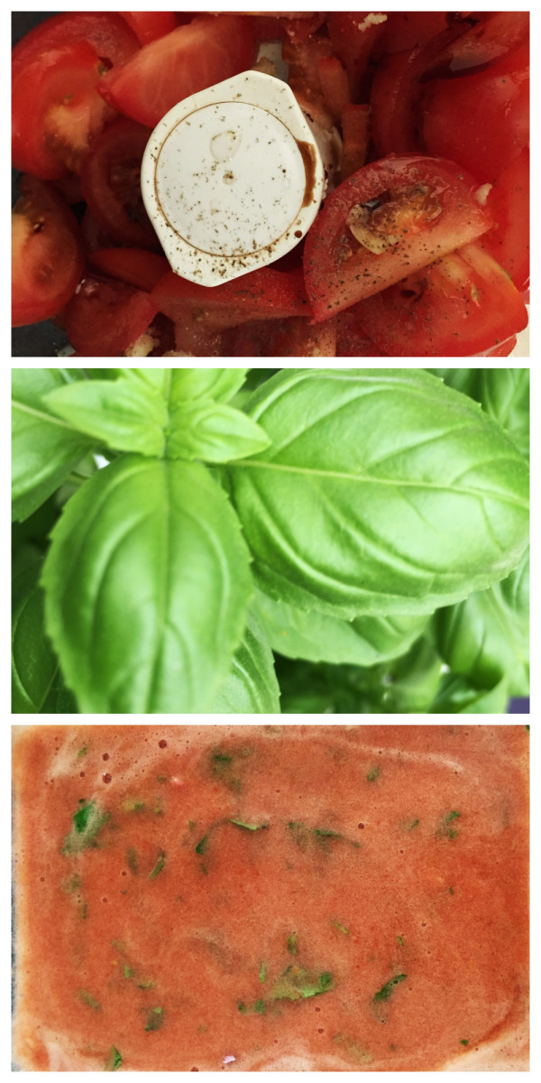 Tomato and Basil Granita Preparation Stages